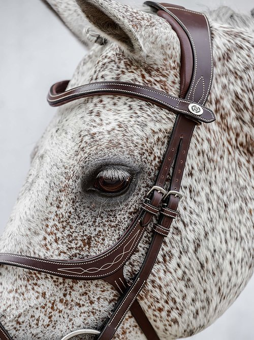 NEW PS of Sweden Athens Bridle