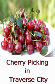 Cherry Picking in Traverse City
