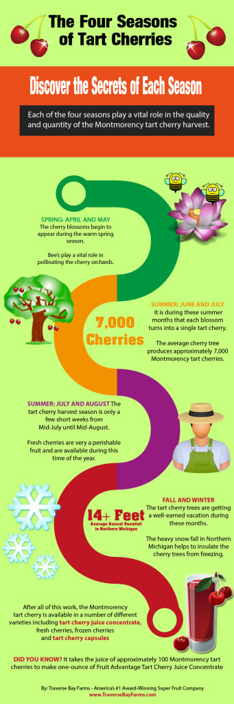 Learn how cherry juice is made from the four seasons of the tart cherry