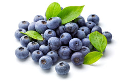 Wild Blueberry Juice Concentrate Benefits