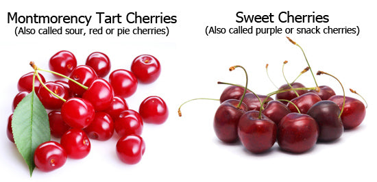 Tart Cherry Verse Sweet Cherries