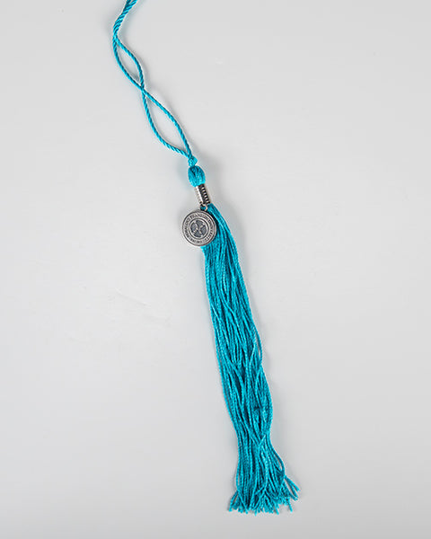 TASSEL, DPT, DOCTOR OF PHYSICAL THERAPY (PEACOCK), College of Health Professions