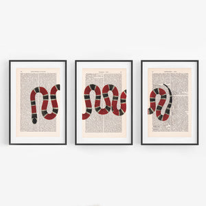 Snake - Set - Art on Words