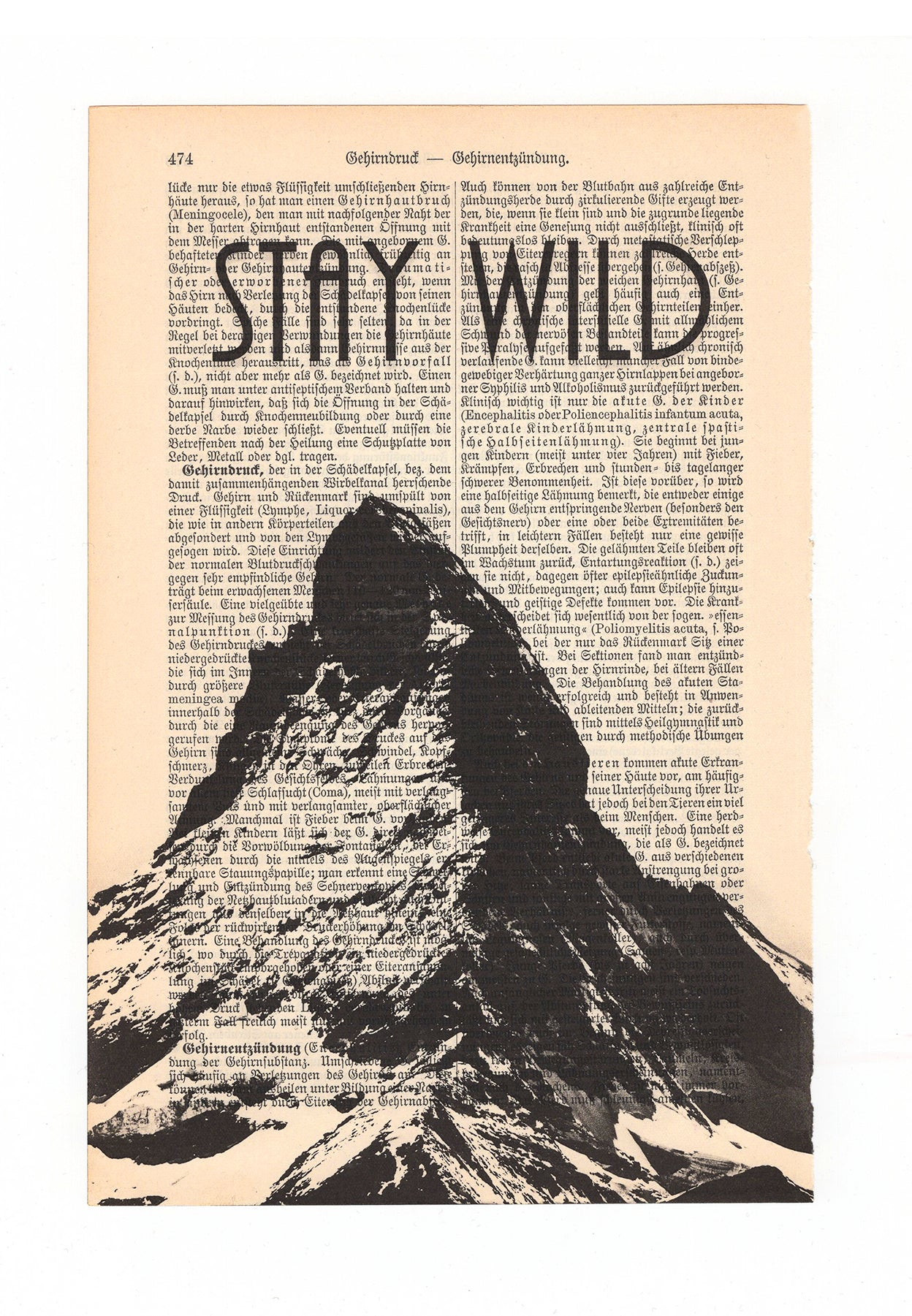 Stay Wild - Art on Words