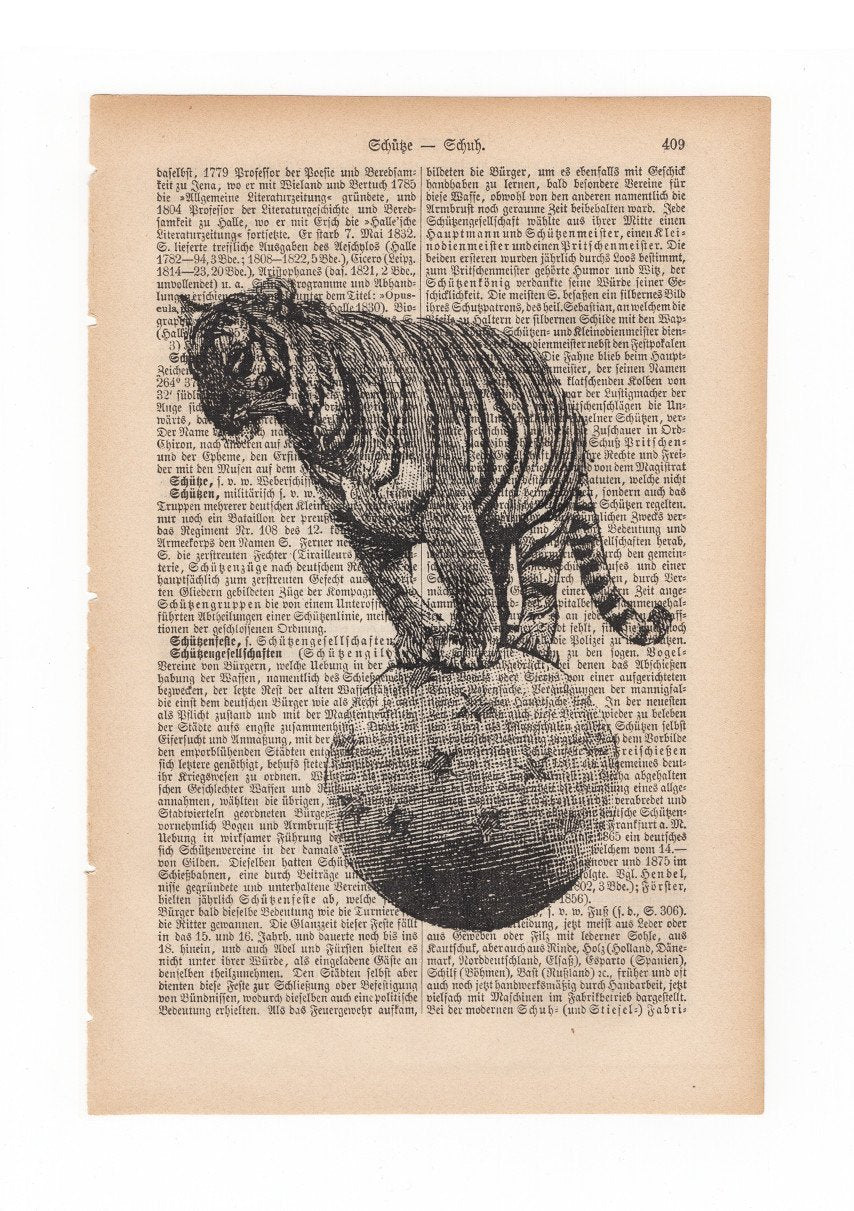Circus tiger - Art on Words