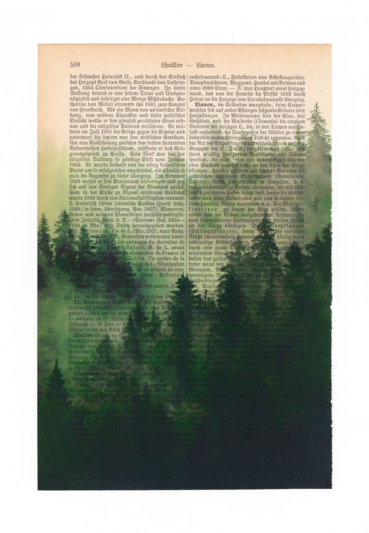 Misty Forest - New Edition - Art on Words