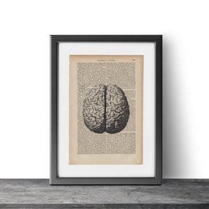Human brain - Art on Words