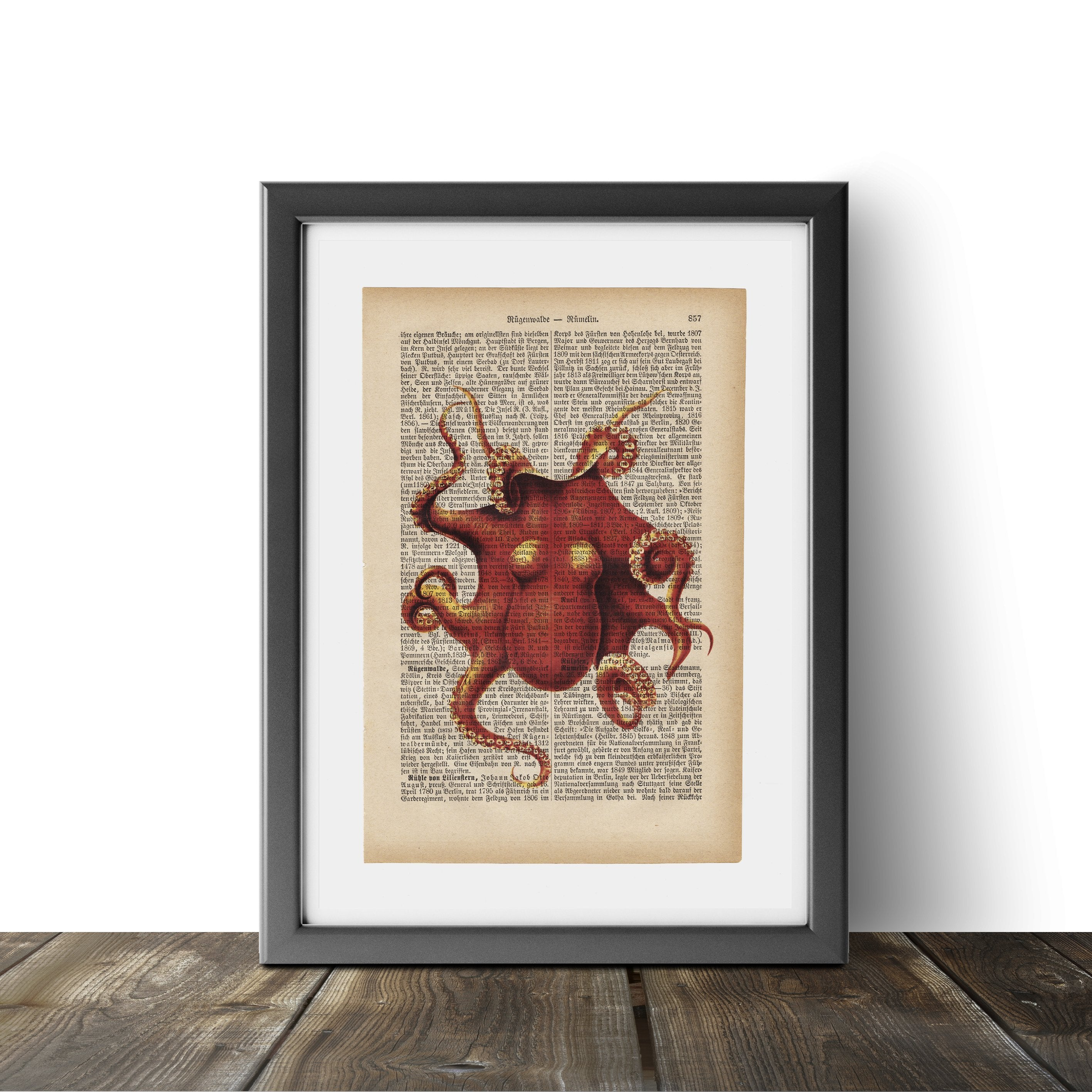 Octopus - Art on Words