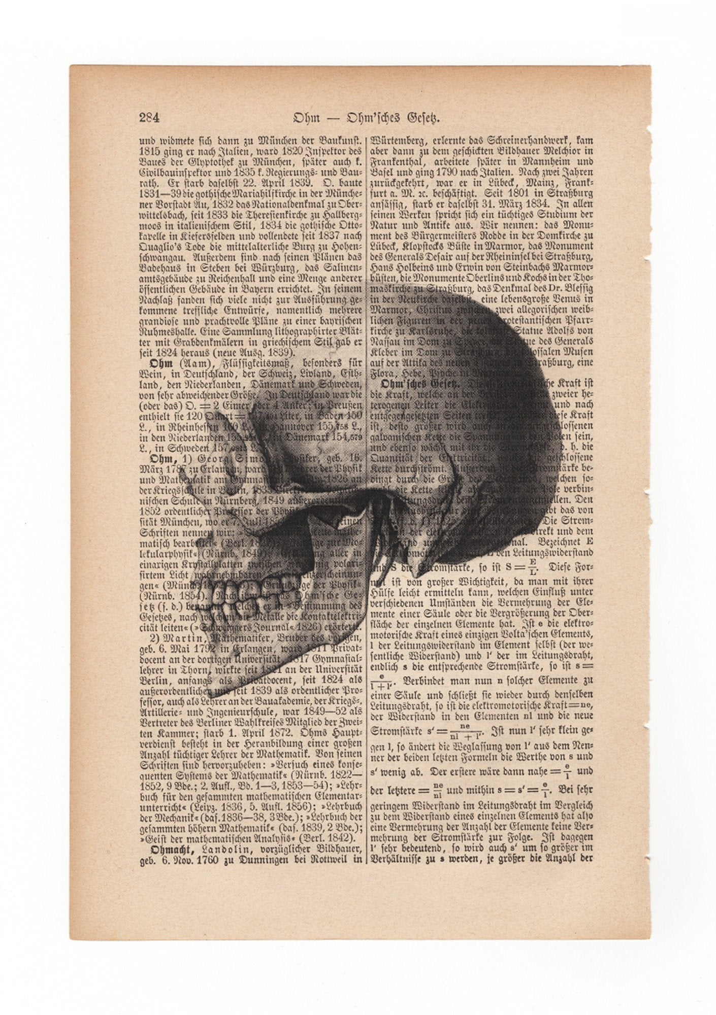 Skull side - Art on Words