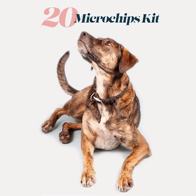 kit of 20 ISO microchips & ID Cards - aZoo.me Webstore