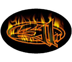 311 - Flames Logo Sticker