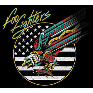 Foo Fighters - Eagle Sticker