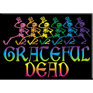 Grateful Dead - Skelly Rainbow Logo Magnet