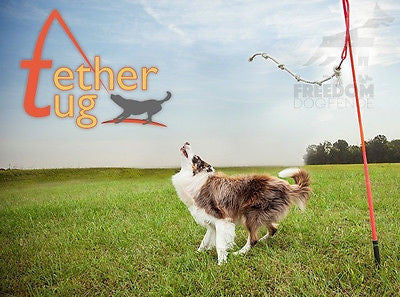 Tether Tug Outdoor Dog Toy Interactive Tugging Pull Exercise Small Medium Large