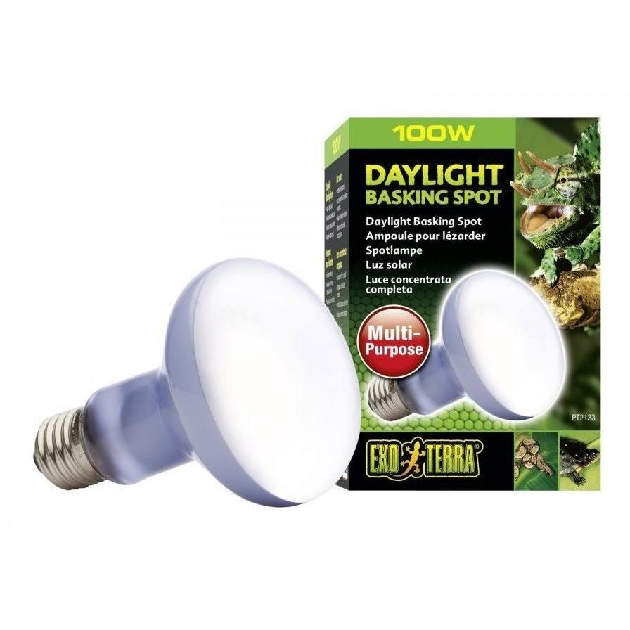 Exo Terra Sun Glo Neodymium Basking Spot Lamps Lighting Incandescent Exo Terra 50 Watts