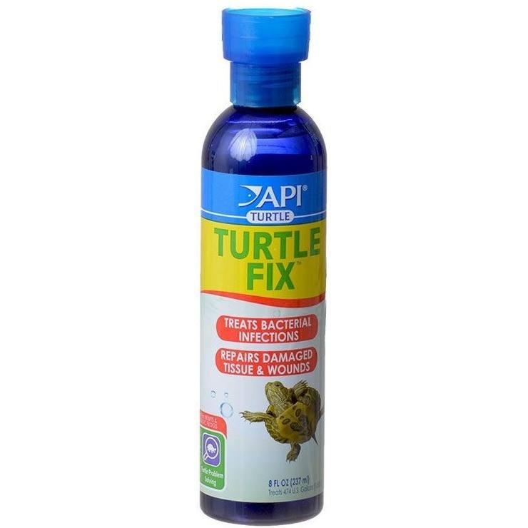 API API Turtle Fix
