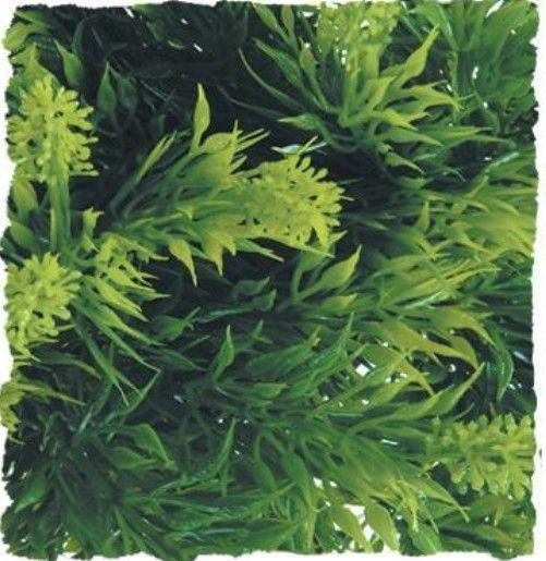 "Zoo Med Malaysian Fern Plant Decorations Zoo Med Medium (18"")"