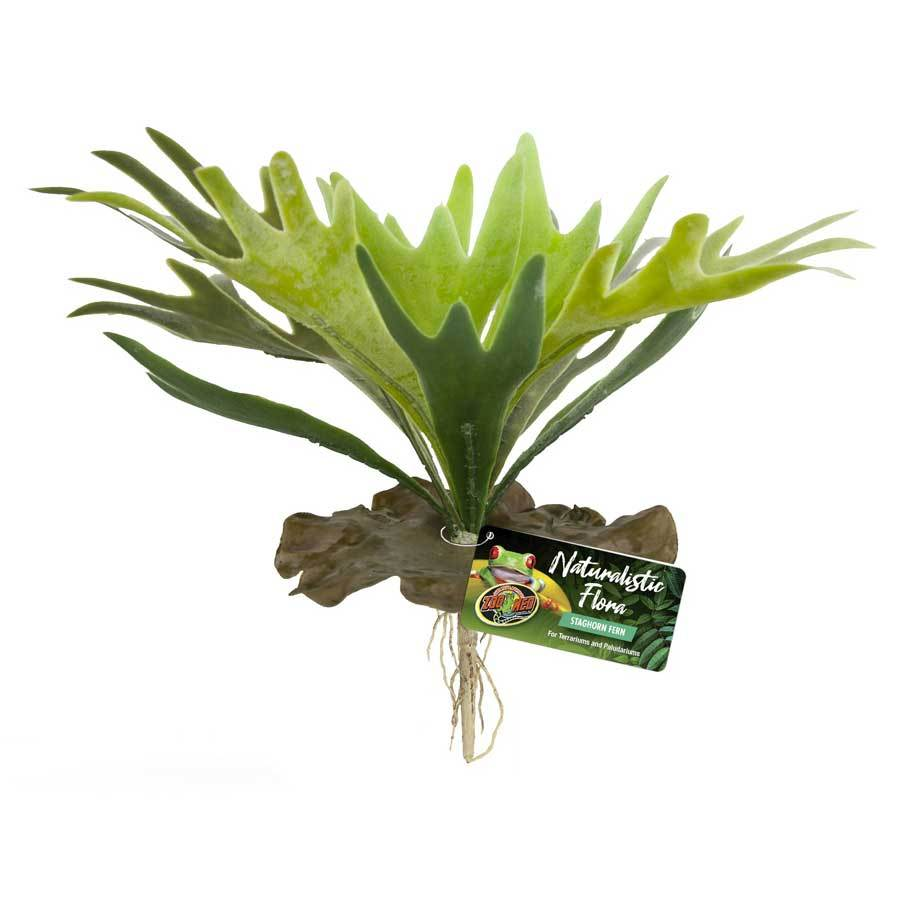 Zoo Med Staghorn Fern Plant - Realistic Foliage Naturalistic Flora Flora & Moss Zoo Med