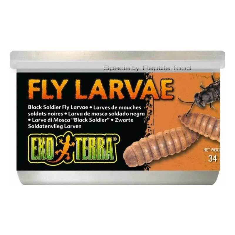 Exo Terra Canned Black Soldier Fly Larvae Specialty Reptile Food 1.2 oz Foods Canned Exo Terra