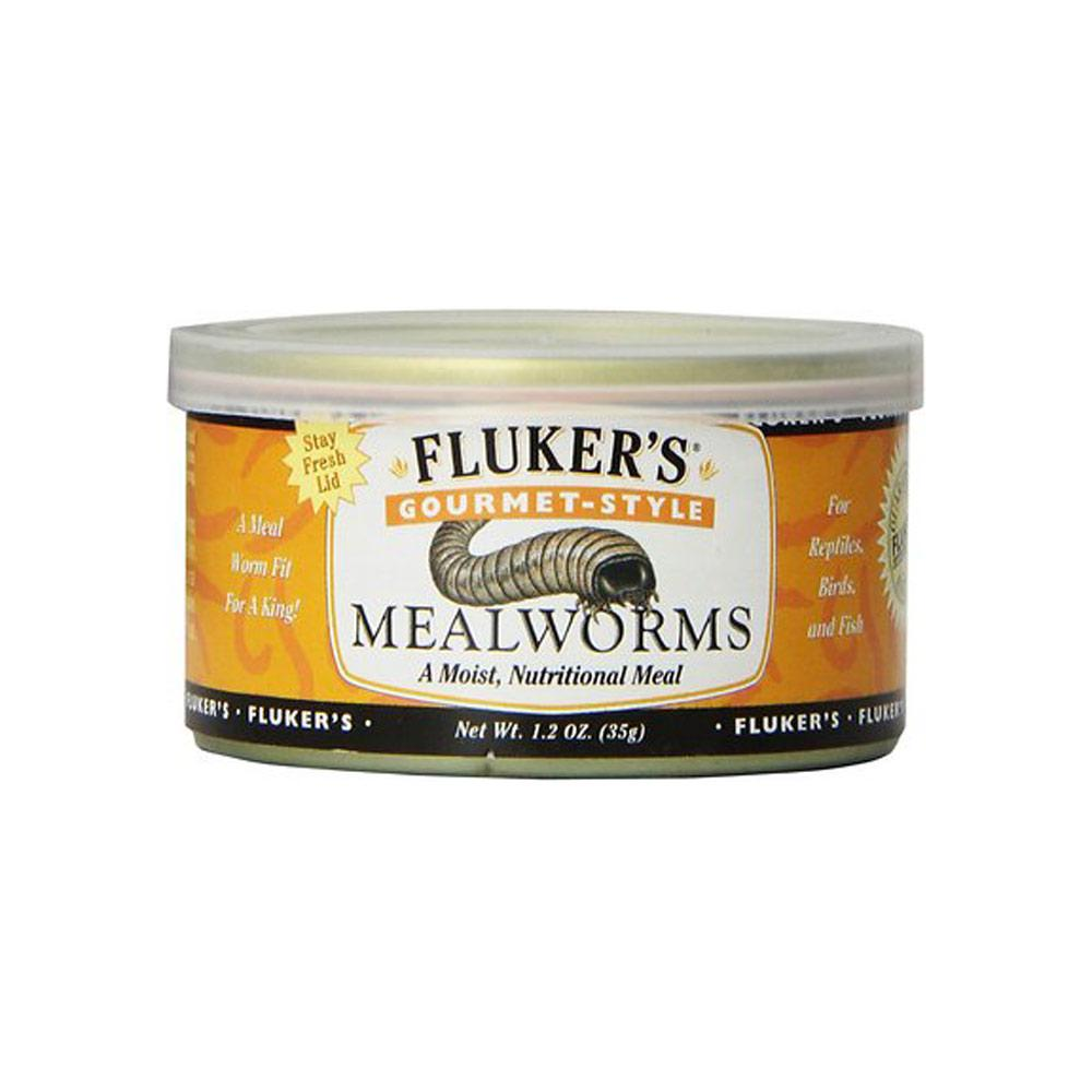 Flukers Gourmet Style Canned Mealworms Foods Canned Flukers