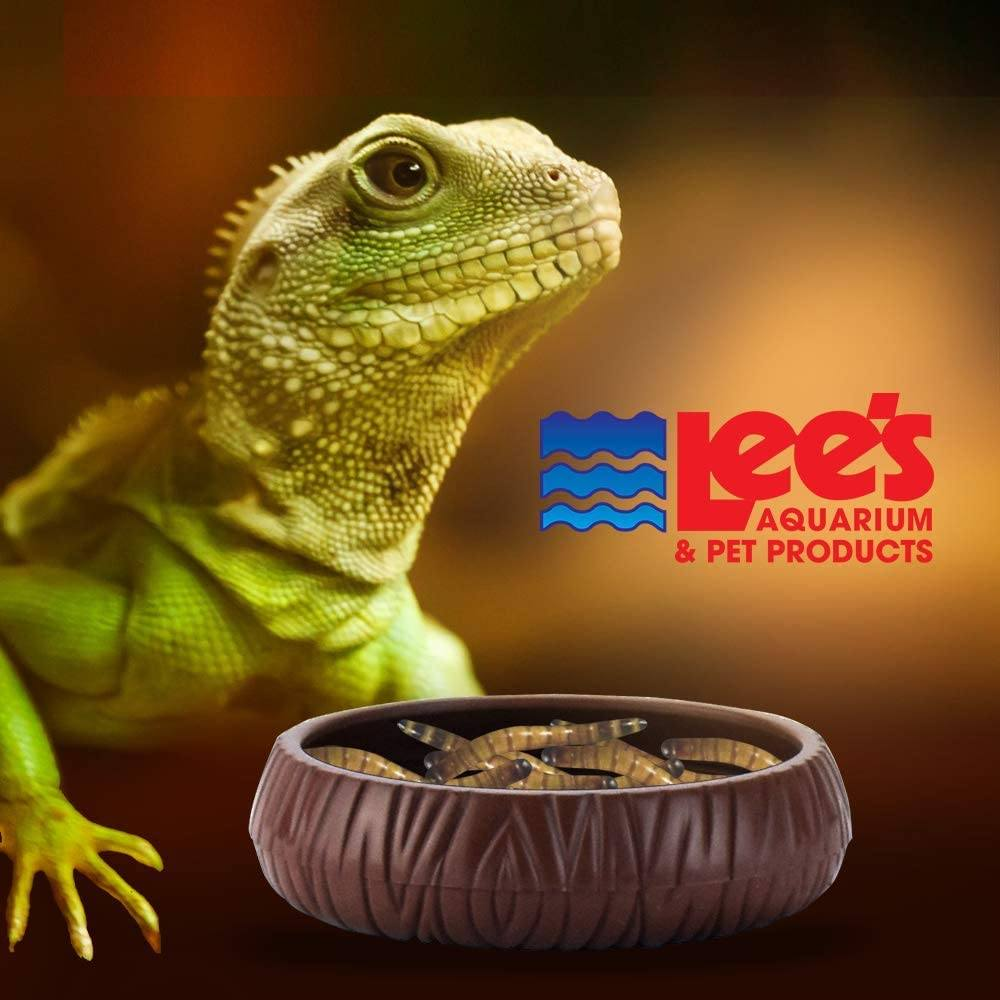 Lee's Mealworm Dish - Plastic - MEALWORM FEEDING DISH Bowls & Dishes Lee's