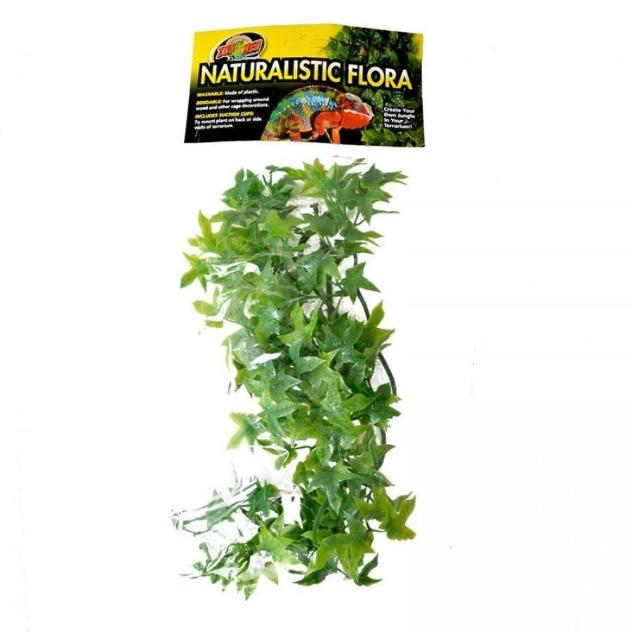 Zoo Med Natural Bush - Congo Ivy Aquarium Plant Flora & Moss Zoo Med