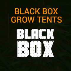 Black Box Grow Tents