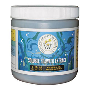Technaflora Plant Products: Soluble Seaweed Extract - GrowDaddy