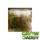 Let's Grow A Pound by SeeMoreBuds - GrowDaddy