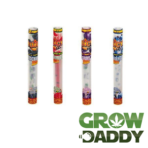 Juicy Jay's Pre-Rolled Cones 1/4' - GrowDaddy
