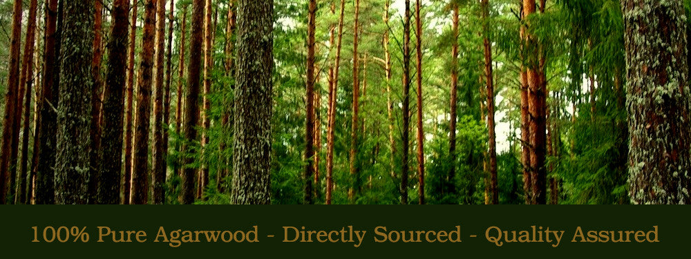 Pure Agarwood Oud Oil