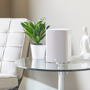 Paradigm PW 300 Wireless Speaker with Play-Fi