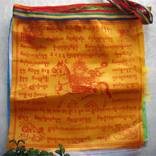 Peaceful Tibetan Prayer Flags - Roots and Sticks