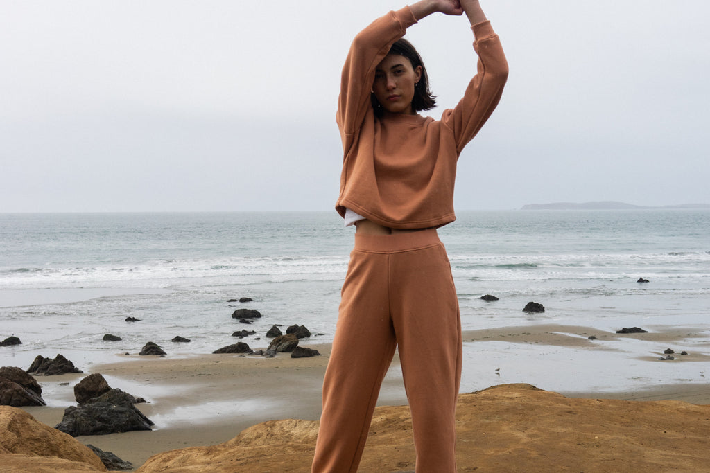 Cropped Sweatshirt in Clay