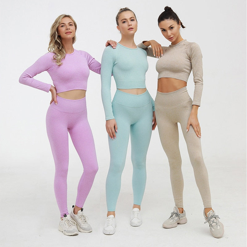 2 Piece Yoga Gym Fitness Athletic Sportswear Leggings Seamless Sports Activewear  Long Sleeve Top Set