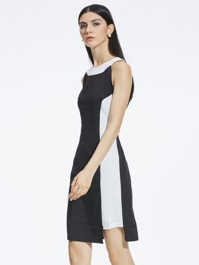 Patchwork Color Block Sleeveless Bodycon Dress