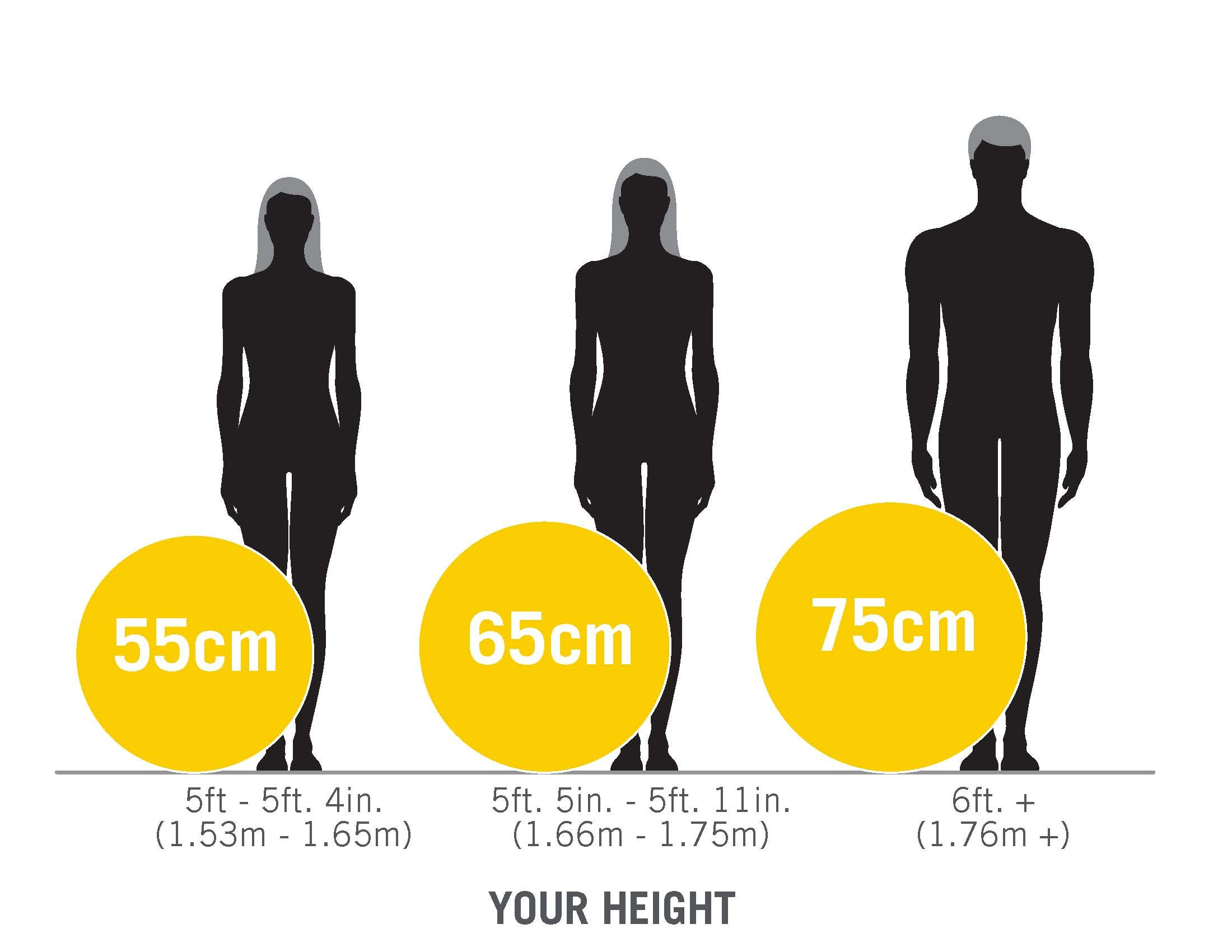 Everlast Fitness Ball Size Guide