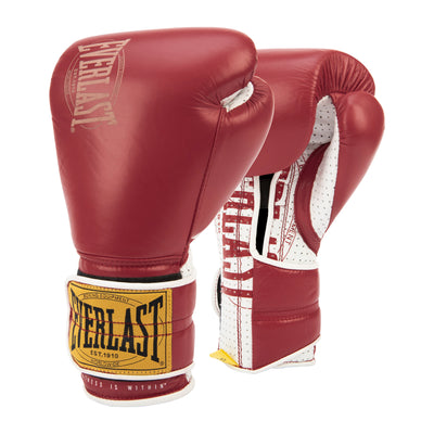 Everlast 1910 Sparring Gloves Hook & Loop