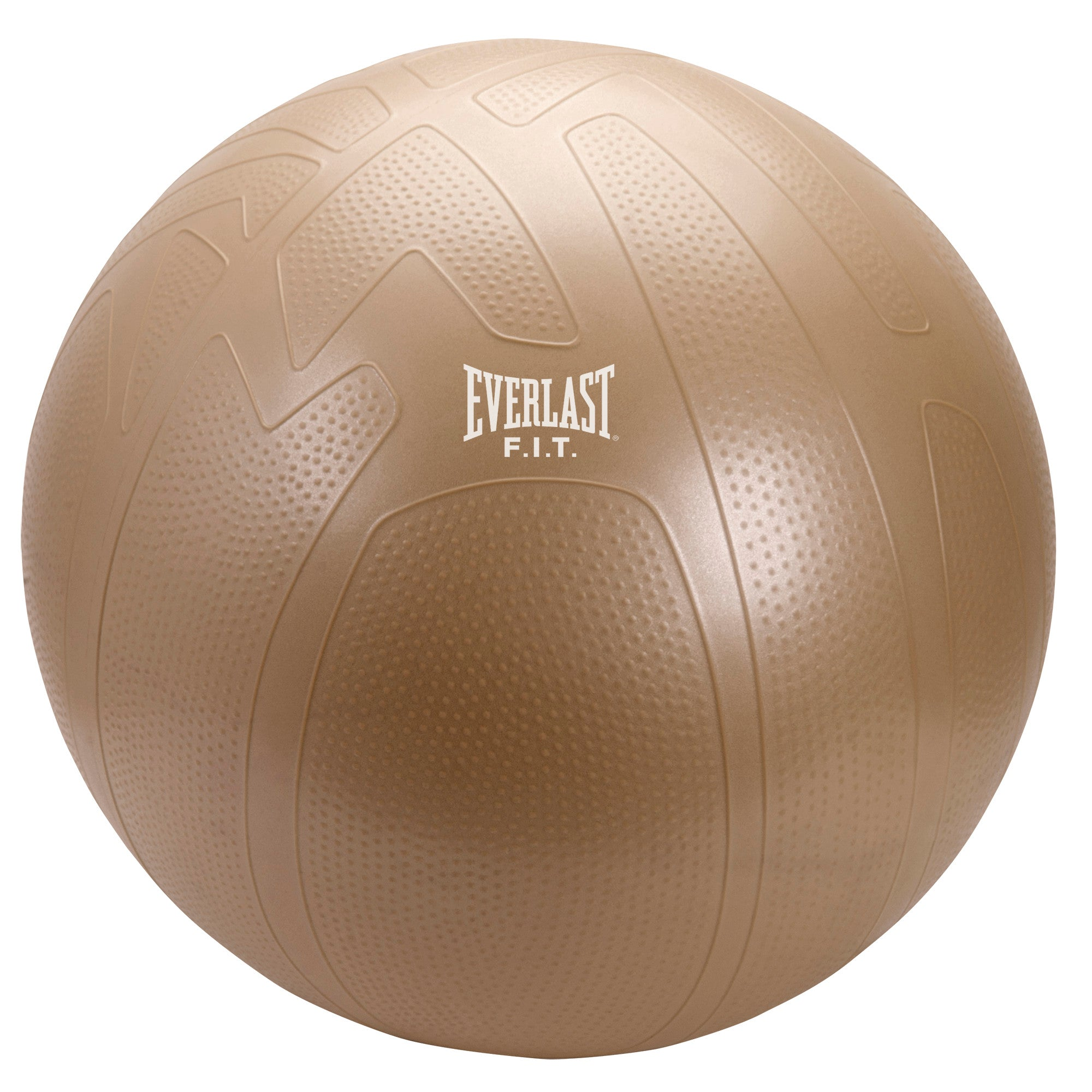 Everlast 65cm Pro Grip Fitness Ball by Everlast Canada