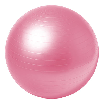 Everlast 65cm Stability Ball Pro by Everlast Canada