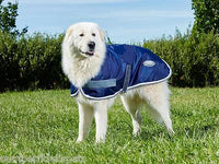 Weatherbeeta Windbreaker 420D Dog Rug Coat Navy/Grey/White Showerproof