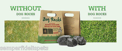 Dog Rocks Bulk pack of 600g - Keep your lawn free from urine stains