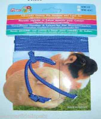 Guinea Pig Small Animal Harness And Walking Lead Set