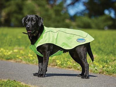 NEW!! Weatherbeeta Reflective Exercise Dog Coat