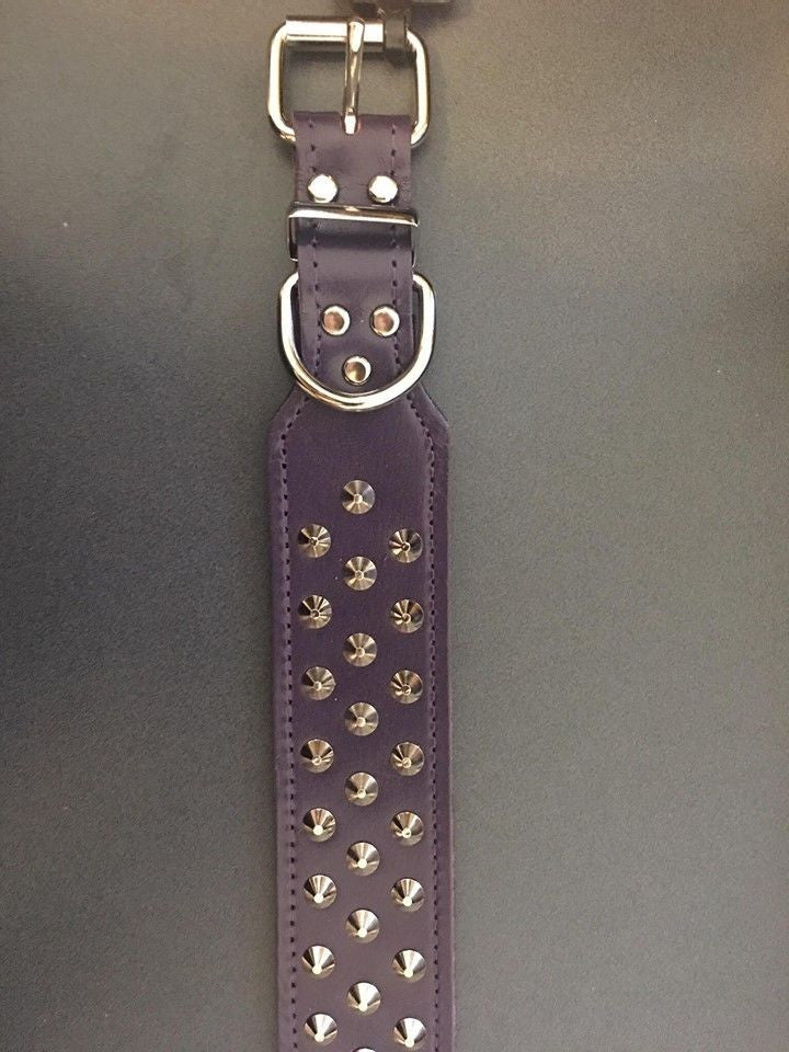 Allpet Staffy Leather Dog Collar Purple