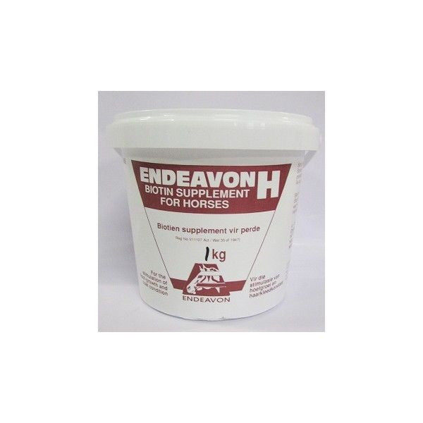 Endeavon H for Horses