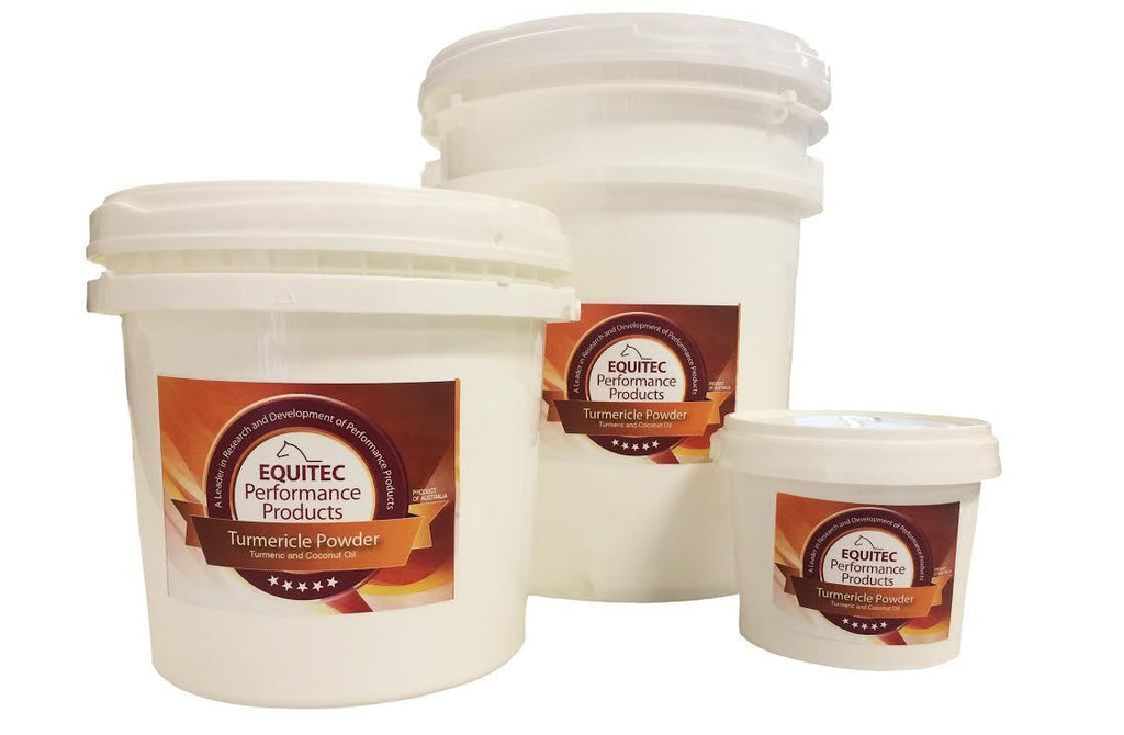 Equitec Turmericle Powder for horses 500g