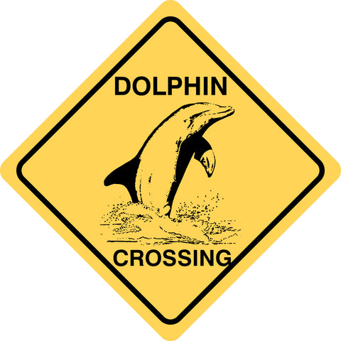 Dolphin Crossing