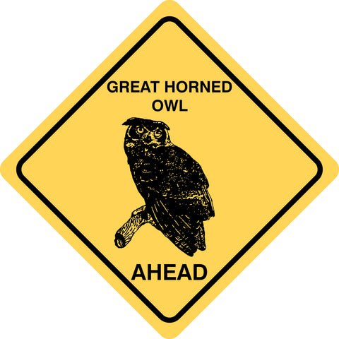 Great Horned Owl Ahead