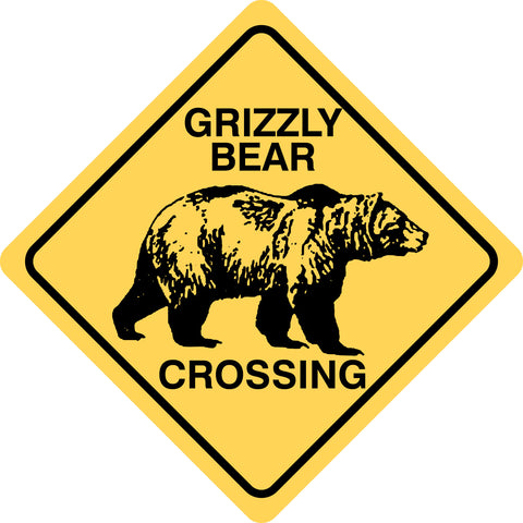 Grizzly Bear Crossing